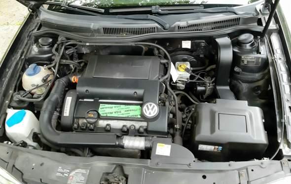 UMFRAGE - Nach einem Wildunfall mit dem Auto in die Werkstatt oder lieber nicht?